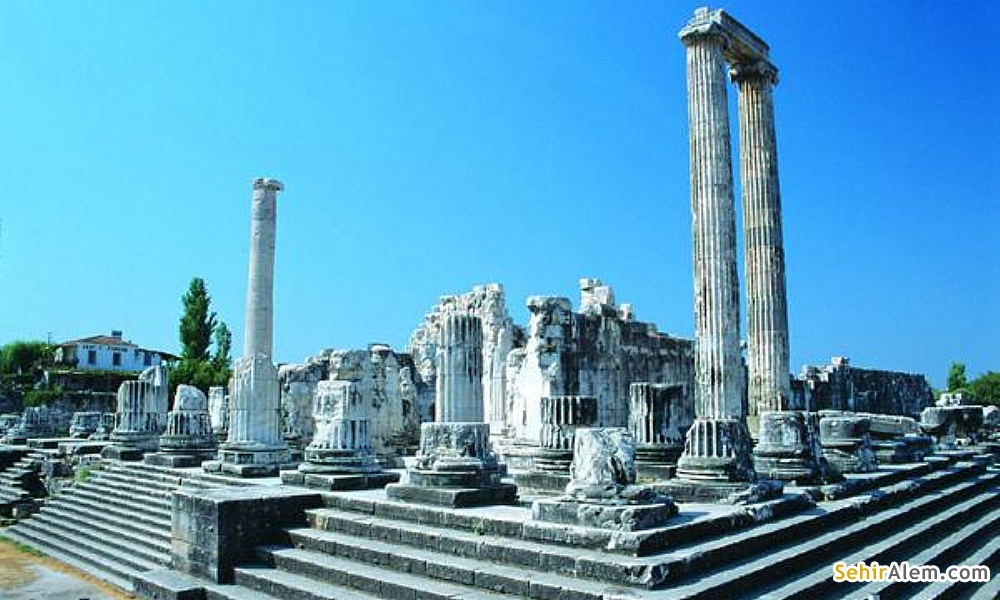5 Day tour of Ephesus, Miletus - Priene - Didyma and Pamukkale / By Bus